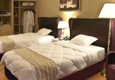 grand-hotel-shiraz-twin-room-2