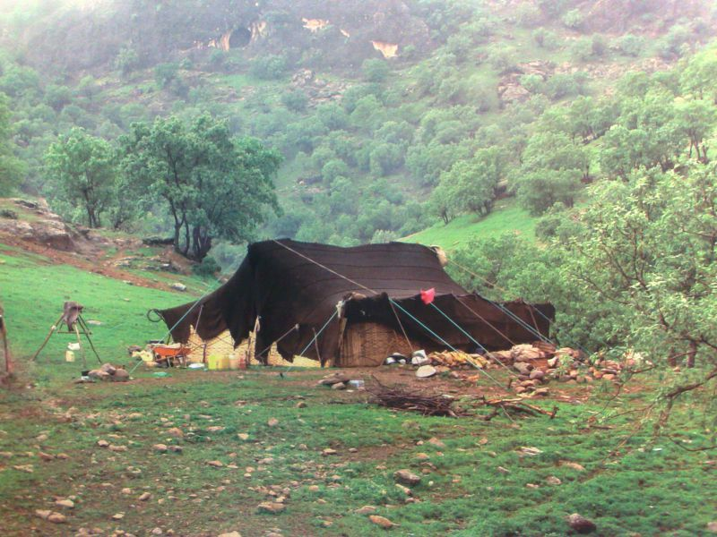 nomads in iran (4)