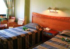 azadi-hotel-isfahan-twin-room