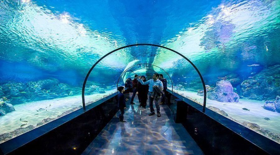 Isfahan-Aquarium-Tunnel