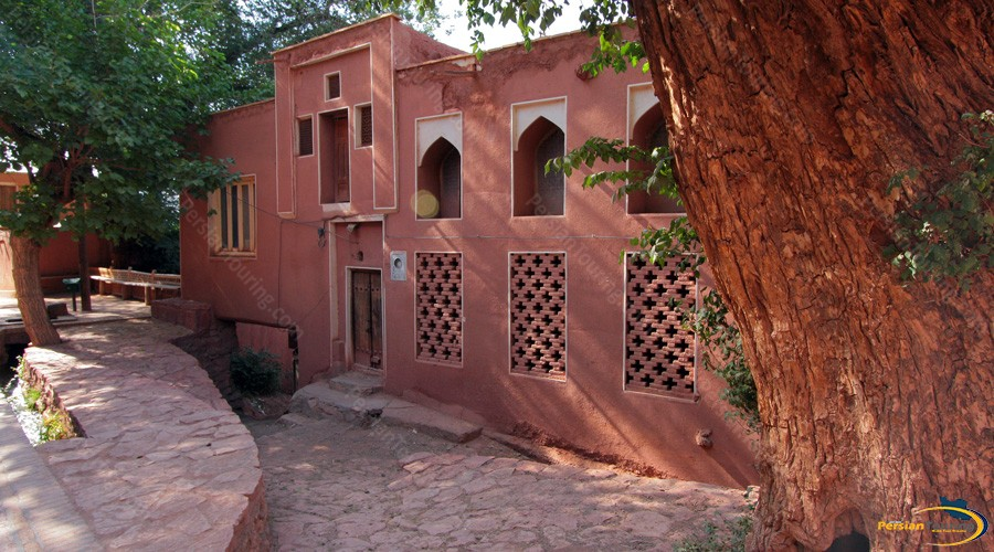 abyaneh-tree