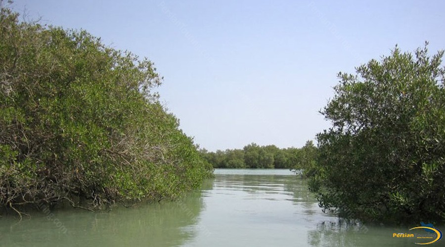 harra-(mangrove)-protected-area-4