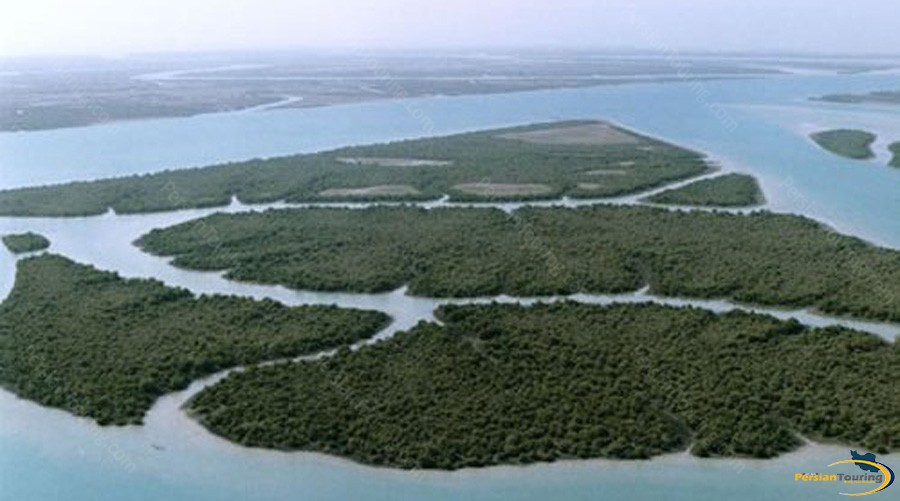 harra-(mangrove)-protected-area-5