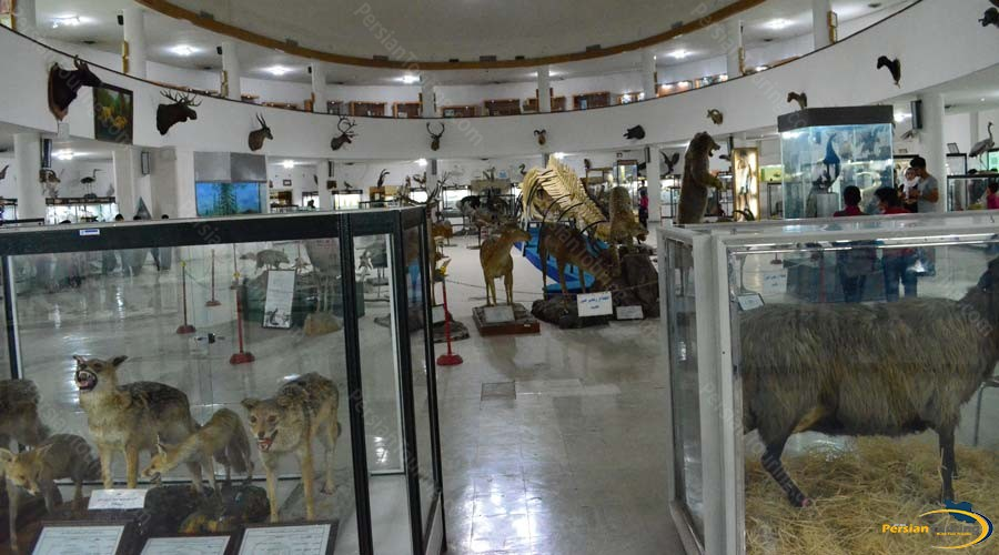 natural-history-and-technology-museum-3
