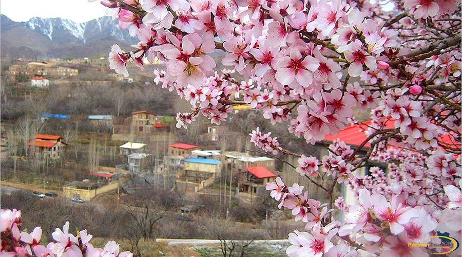 aran-va-bidgol-village-5