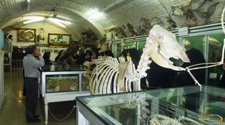 natural-science-musem-5